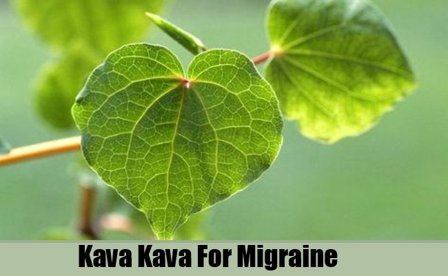 How to Get Rid of Migraines with Kava-Kava