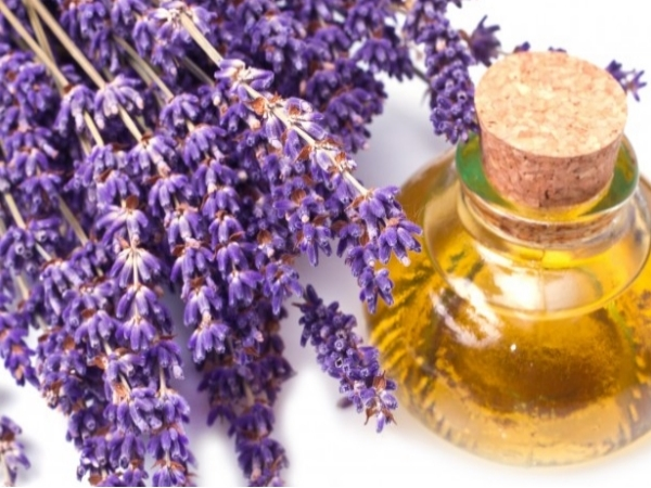 Lavender Oil for Yellow Nails